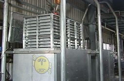 Pasteurizing Machines